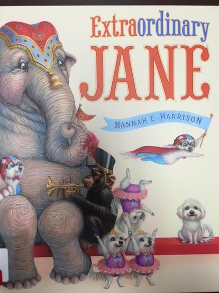 Extraordinary Jane Book